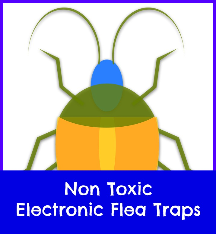 where can I buy Victor flea traps